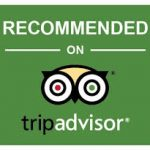 https://www.tripadvisor.es/AttractionProductReview-g187443-d21280998-Seville_Walking_Tour_with_Lunch-Seville_Province_of_Seville_Andalucia.html